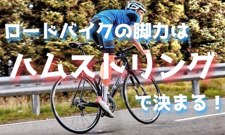 ロードバイクの脚力はハムストリング次第【筋肉を鍛える】