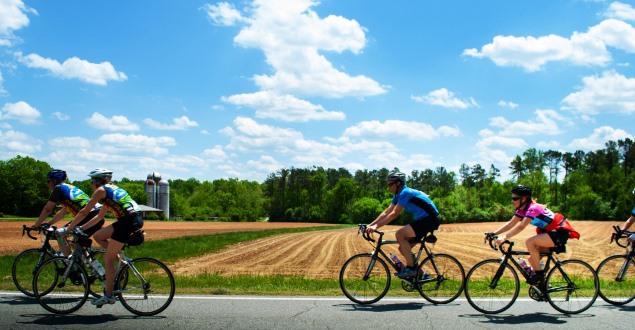 サイクリングロード・コース一覧宮城県
